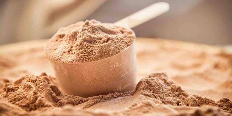 Whey Proteini Neden Önemli?